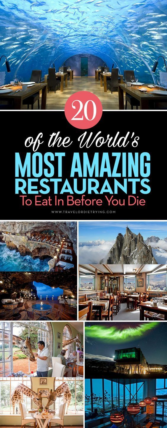 Here is the list features some of the most outstanding, the most unique, and the most bizarre restaurants from around the world. Let's take a look. #restaurant #bestrestaurants #creativerestaurants